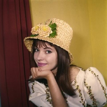 Anna-Karina-style-file-outfit-fashion-best-looks-french-icon-my-slightly-messy-life-20